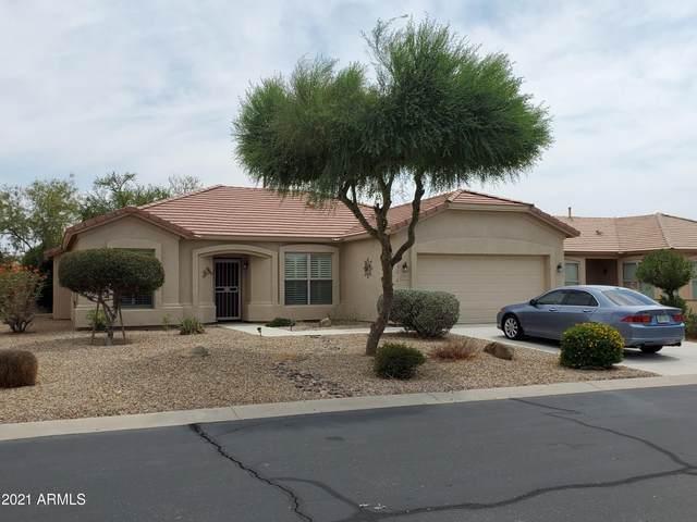 3137 E Palm Beach Drive, Chandler, AZ 85249 (MLS #6269691) :: Keller Williams Realty Phoenix