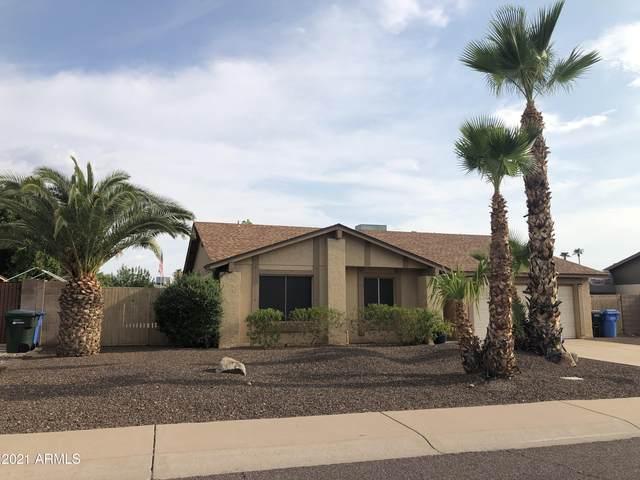 3601 W Angela Drive, Glendale, AZ 85308 (MLS #6269723) :: The Dobbins Team