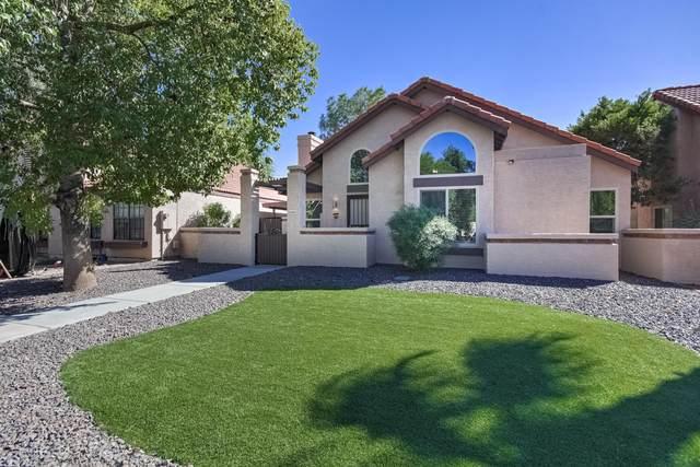 1847 E Secretariat Drive, Tempe, AZ 85284 (MLS #6269731) :: The Copa Team | The Maricopa Real Estate Company
