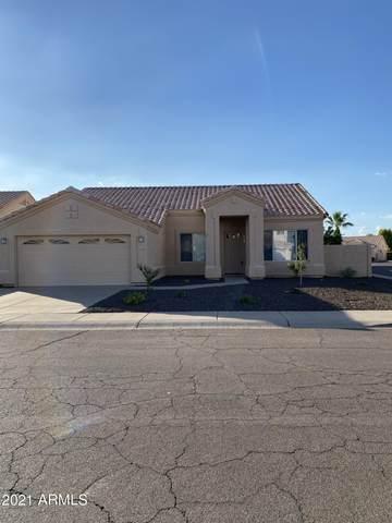 3330 N Garden Lane, Avondale, AZ 85392 (MLS #6269753) :: Arizona 1 Real Estate Team