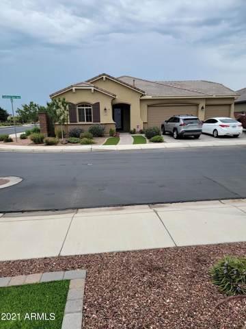 1228 W Siebold Tree Avenue, Queen Creek, AZ 85140 (MLS #6269757) :: The Copa Team | The Maricopa Real Estate Company