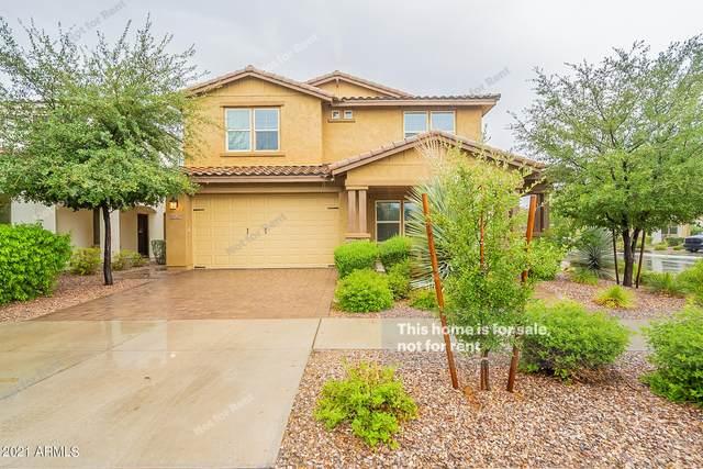 4928 S Dassault Way, Mesa, AZ 85212 (MLS #6269786) :: The Copa Team | The Maricopa Real Estate Company