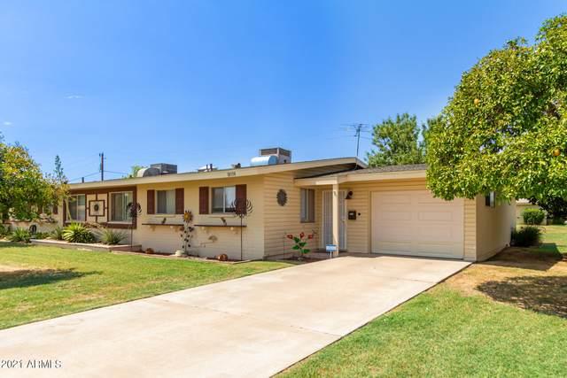 10338 W Clair Drive, Sun City, AZ 85351 (#6269808) :: Luxury Group - Realty Executives Arizona Properties