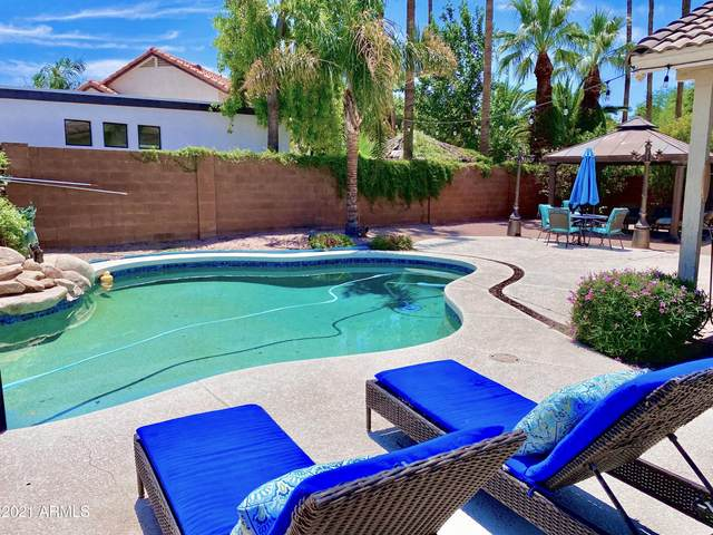 3501 E Marco Polo Road, Phoenix, AZ 85050 (MLS #6269881) :: The Laughton Team