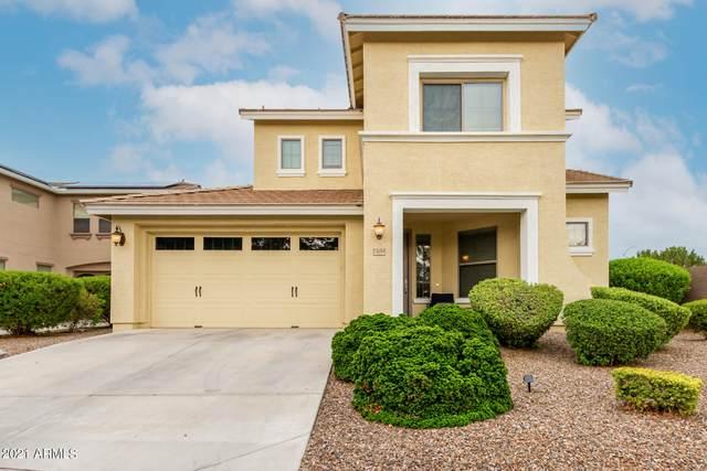 15059 N 145TH Avenue, Surprise, AZ 85379 (MLS #6269939) :: Yost Realty Group at RE/MAX Casa Grande
