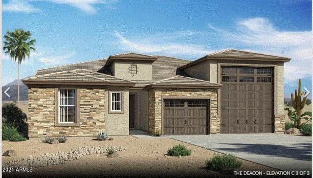 24528 N Seed Road, Florence, AZ 85132 (MLS #6270061) :: Openshaw Real Estate Group in partnership with The Jesse Herfel Real Estate Group