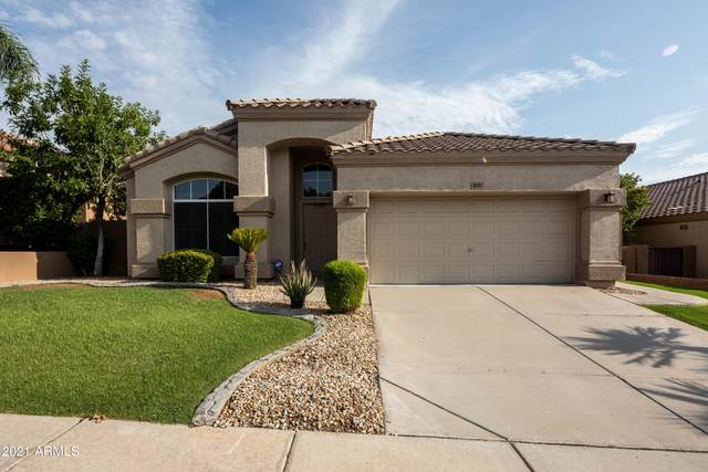 833 W Locust Drive, Chandler, AZ 85248 (MLS #6270124) :: The Everest Team at eXp Realty