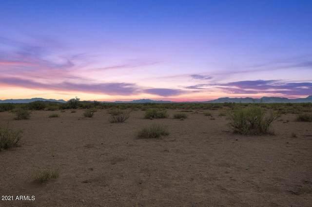 0 N Adobe Road, Willcox, AZ 85643 (MLS #6270139) :: Howe Realty