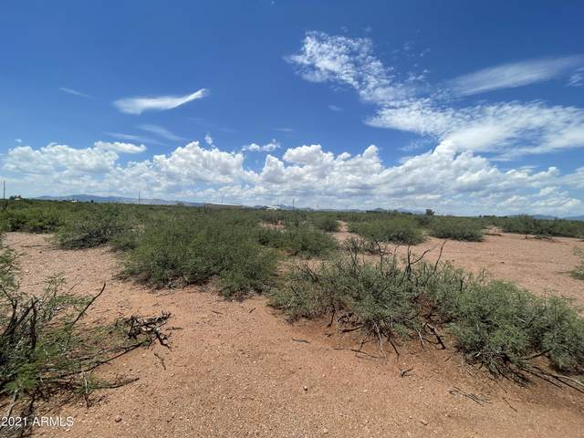 Tbd 40 AC Beki Lane, Douglas, AZ 85607 (#6270171) :: Luxury Group - Realty Executives Arizona Properties