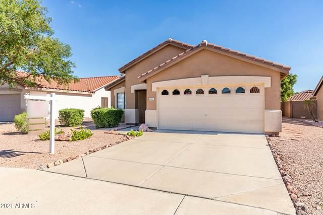 10441 E Arcadia Avenue, Mesa, AZ 85208 (MLS #6270213) :: Power Realty Group Model Home Center