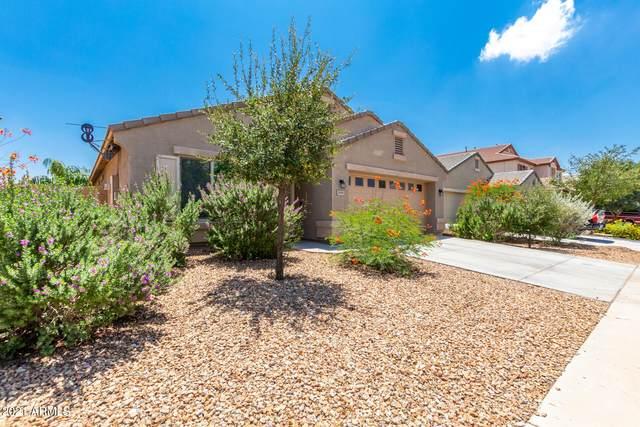 39995 W Robbins Drive, Maricopa, AZ 85138 (#6270215) :: Long Realty Company
