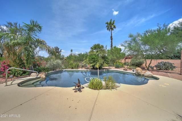 23430 N 83rd Street, Scottsdale, AZ 85255 (MLS #6270228) :: Yost Realty Group at RE/MAX Casa Grande
