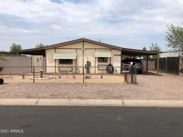 244 S 92nd Place, Mesa, AZ 85208 (MLS #6270247) :: Yost Realty Group at RE/MAX Casa Grande