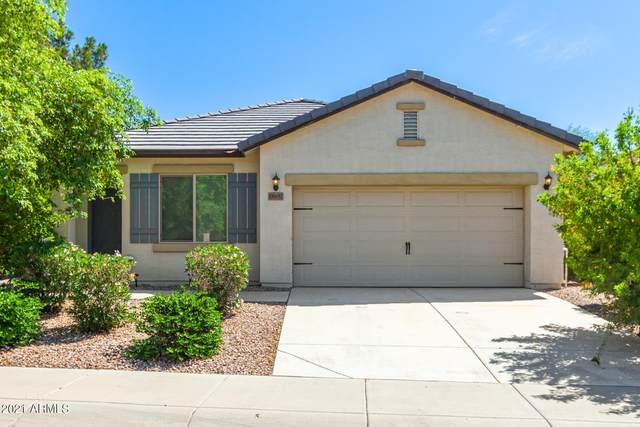 18537 N Cook Drive, Maricopa, AZ 85138 (MLS #6270315) :: Yost Realty Group at RE/MAX Casa Grande