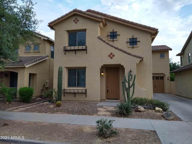 18821 E Swan Drive, Queen Creek, AZ 85142 (MLS #6270333) :: Yost Realty Group at RE/MAX Casa Grande