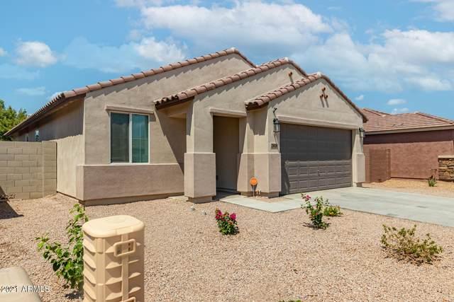 25028 W Wayland Drive, Buckeye, AZ 85326 (MLS #6270355) :: Kepple Real Estate Group