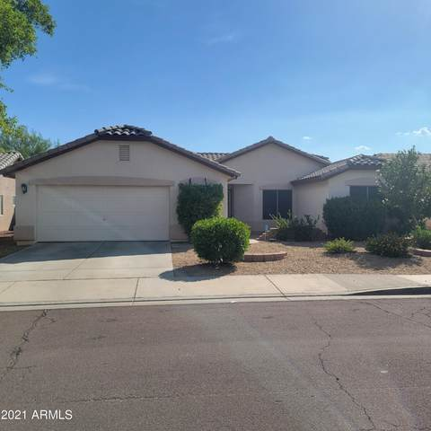 16300 N Naegel Drive, Surprise, AZ 85374 (MLS #6270486) :: Yost Realty Group at RE/MAX Casa Grande
