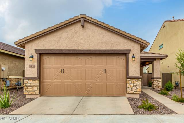 14230 W Voltaire Street, Surprise, AZ 85379 (MLS #6270487) :: Openshaw Real Estate Group in partnership with The Jesse Herfel Real Estate Group