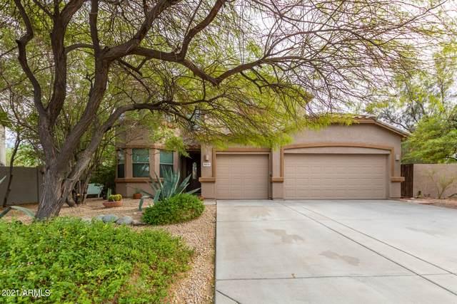 8379 W Andrea Drive, Peoria, AZ 85383 (MLS #6270490) :: The Helping Hands Team