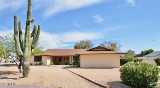 8939 W Camino De Oro, Peoria, AZ 85383 (MLS #6270537) :: The Helping Hands Team