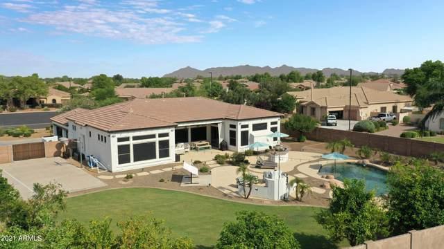 6484 S Crestview Court, Gilbert, AZ 85298 (MLS #6270570) :: Kepple Real Estate Group