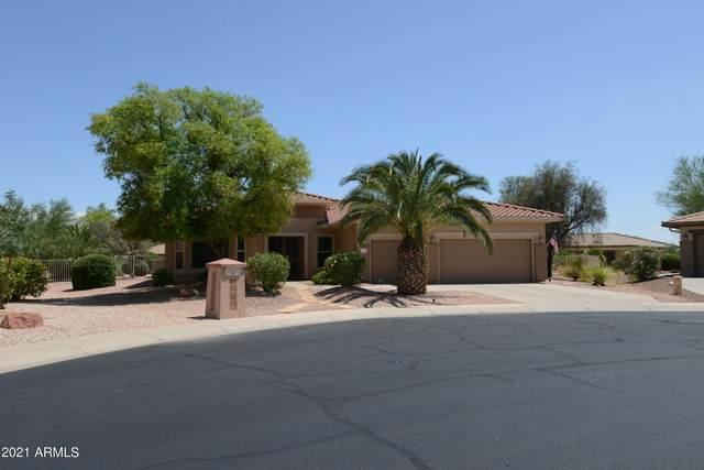 18718 N Palacio Lane, Surprise, AZ 85387 (#6270576) :: The Josh Berkley Team