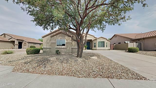 682 W Myrtle Drive, Chandler, AZ 85248 (#6270606) :: The Josh Berkley Team