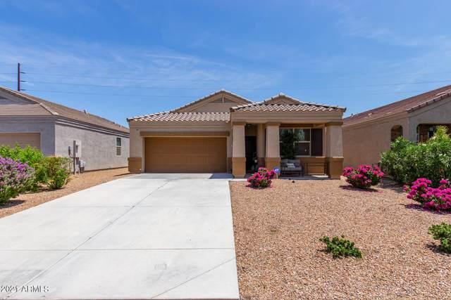 29151 N Fire Agate Road, San Tan Valley, AZ 85143 (MLS #6270641) :: Yost Realty Group at RE/MAX Casa Grande
