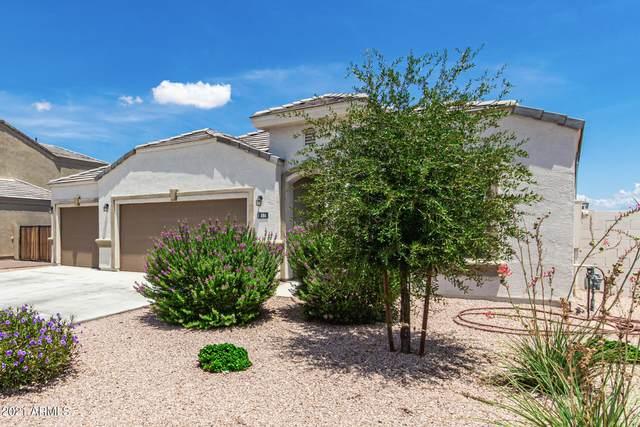 886 W Santa Gertrudis Trail, San Tan Valley, AZ 85143 (MLS #6270691) :: Yost Realty Group at RE/MAX Casa Grande