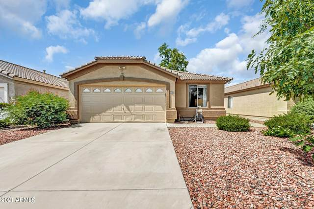 11342 W Crestbrook Drive, Surprise, AZ 85378 (MLS #6270696) :: Kepple Real Estate Group