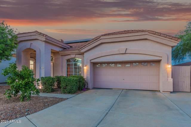 1206 W Betty Elyse Lane, Phoenix, AZ 85023 (MLS #6270710) :: Yost Realty Group at RE/MAX Casa Grande