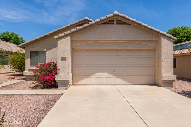 13838 W Elm Street, Surprise, AZ 85374 (MLS #6270735) :: Yost Realty Group at RE/MAX Casa Grande