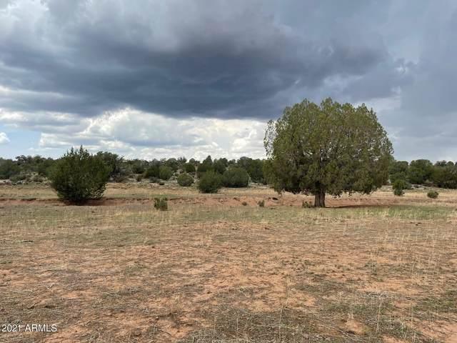 40 Acres Denny 5 Road, Seligman, AZ 86337 (MLS #6270751) :: Kepple Real Estate Group