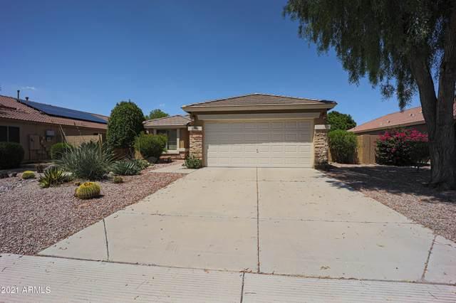 13406 W Port Royale Lane, Surprise, AZ 85379 (MLS #6270774) :: My Home Group