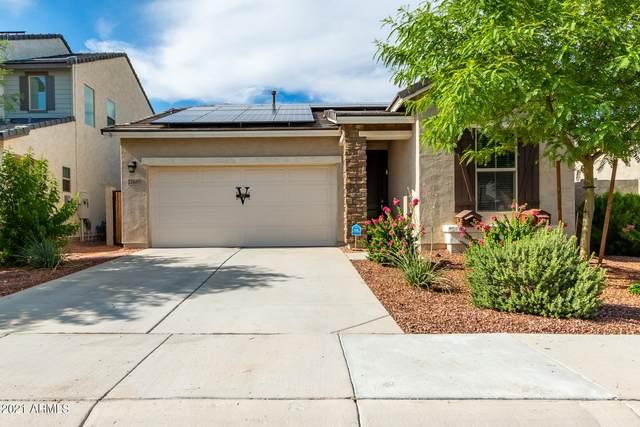 12650 W Junipero Court, Sun City West, AZ 85375 (MLS #6270793) :: Yost Realty Group at RE/MAX Casa Grande
