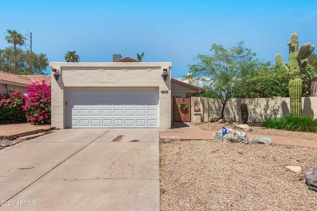 18439 N 16TH Way, Phoenix, AZ 85022 (MLS #6270818) :: Yost Realty Group at RE/MAX Casa Grande