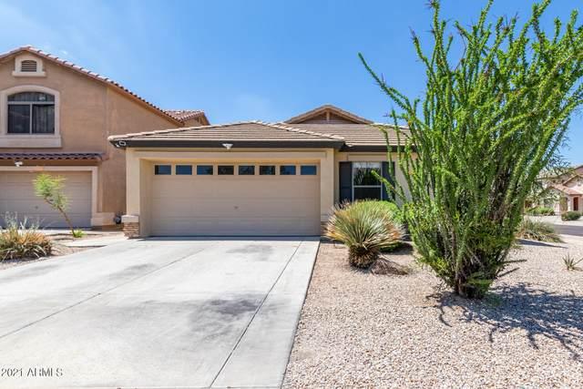 8702 S 50TH Drive, Laveen, AZ 85339 (MLS #6270855) :: Yost Realty Group at RE/MAX Casa Grande