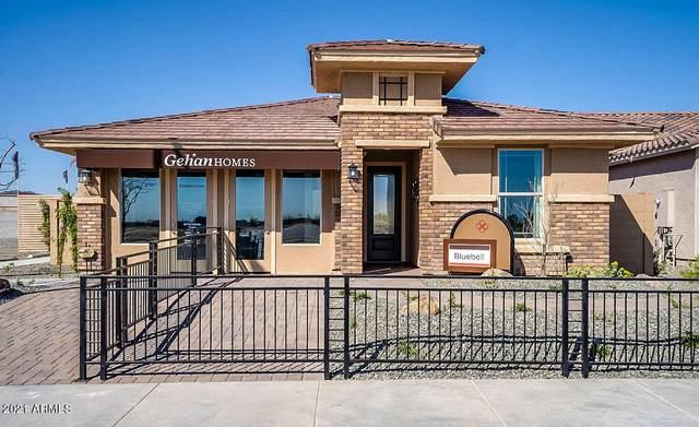 5206 N 188TH Lane, Litchfield Park, AZ 85340 (MLS #6270880) :: Synergy Real Estate Partners