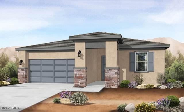 4803 S 117TH Avenue, Avondale, AZ 85323 (MLS #6270916) :: Yost Realty Group at RE/MAX Casa Grande