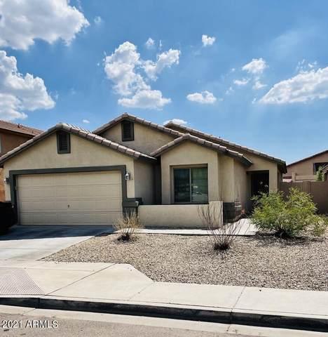 6538 S 44TH Avenue, Laveen, AZ 85339 (MLS #6270925) :: The Laughton Team