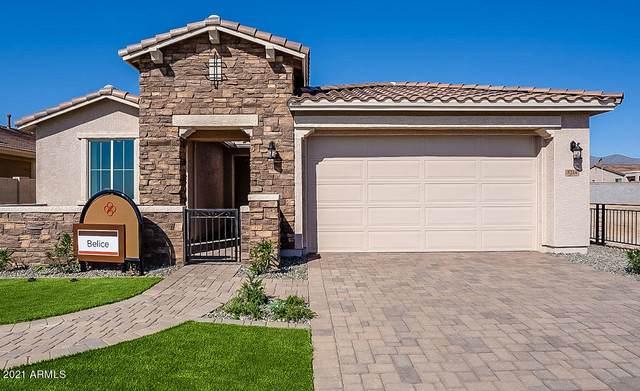 5214 N 188TH Lane, Litchfield Park, AZ 85340 (MLS #6270942) :: Synergy Real Estate Partners
