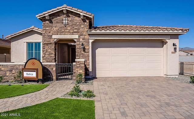 5214 N 188TH Lane, Litchfield Park, AZ 85340 (MLS #6270943) :: Synergy Real Estate Partners