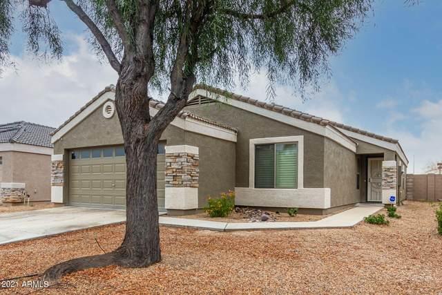 14708 N El Frio Street, El Mirage, AZ 85335 (MLS #6270958) :: Power Realty Group Model Home Center