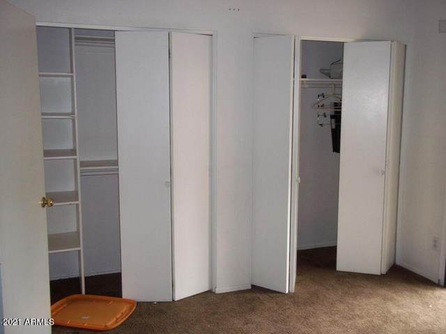3491 N Arizona Avenue #49, Chandler, AZ 85225 (MLS #6270985) :: The Daniel Montez Real Estate Group
