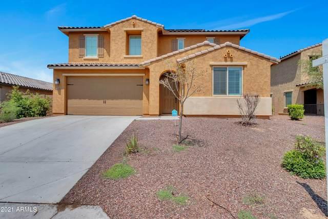 18356 W Getty Drive, Goodyear, AZ 85338 (MLS #6271004) :: Elite Home Advisors