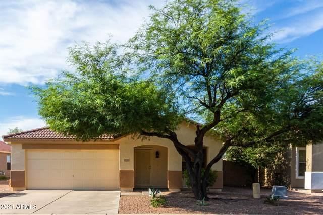1110 E Pedro Road, Phoenix, AZ 85042 (MLS #6271005) :: Keller Williams Realty Phoenix