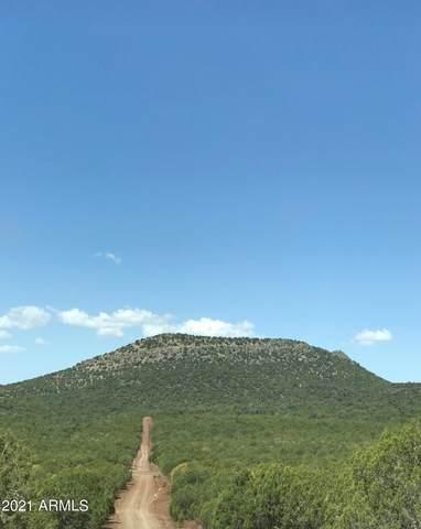 268 Olivas Alone, Ash Fork, AZ 86320 (MLS #6271042) :: Power Realty Group Model Home Center