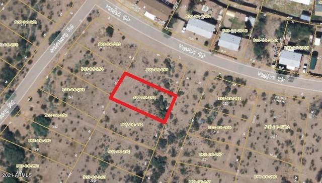 456 Geliebter Drive, Morristown, AZ 85342 (MLS #6271045) :: Service First Realty