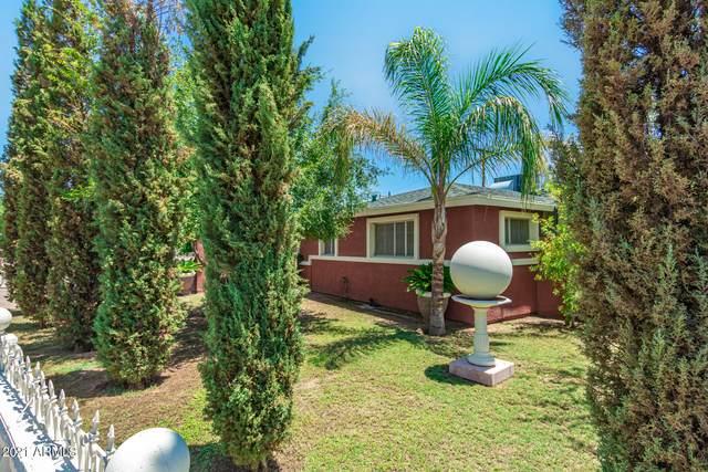3701 E Sheridan Street, Phoenix, AZ 85008 (MLS #6271050) :: Yost Realty Group at RE/MAX Casa Grande