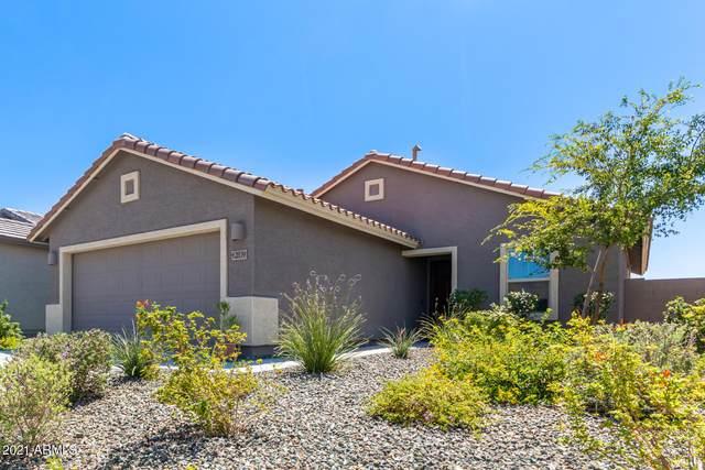 12839 E Crystal Forest, Gold Canyon, AZ 85118 (MLS #6271088) :: Executive Realty Advisors